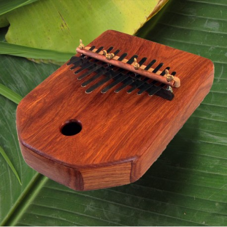 Micro coconut kalimba