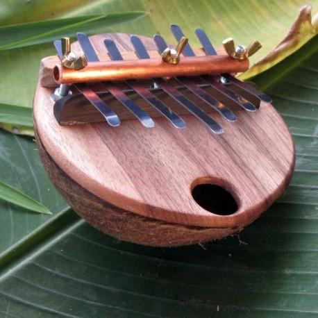 Micro coco